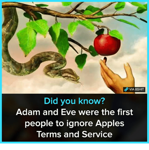 Adam and Eve, Memes, and 🤖: VIA 8SHIT  Did you know?  Adam and Eve were the first  people to ignore Apples  Terms and Service