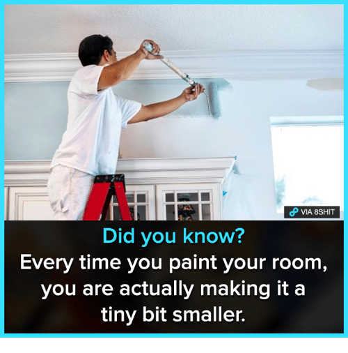 Memes, Paint, and Time: VIA 8SHIT  Did you know?  Every time you paint your room  you are actually making it a  tiny bit smaller.