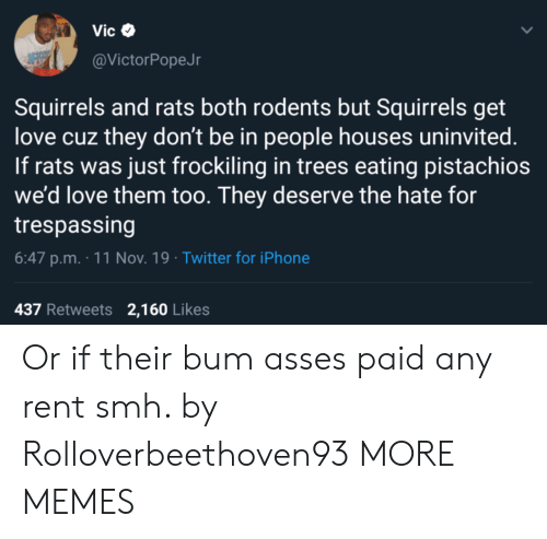 rent: Vic  @VictorPopeJr  Squirrels and rats both rodents but Squirrels get  love cuz they don't be in people houses uninvited.  If rats was just frockiling in trees eating pistachios  we'd love them too. They deserve the hate for  trespassing  6:47 p.m. 11 Nov. 19 Twitter for iPhone  437 Retweets 2,160 Likes Or if their bum asses paid any rent smh. by Rolloverbeethoven93 MORE MEMES