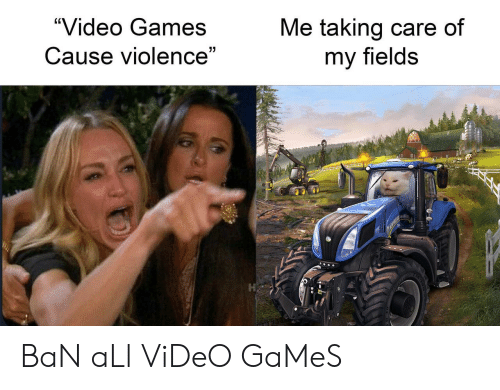 """Video Games, Games, and Video: """"Video Games  Me taking care of  my fields  Cause violence""""  7 BaN aLl ViDeO GaMeS"""