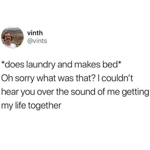 "What Was That: vinth  @vints  ""does laundry and makes bed*  Oh sorry what was that? I couldn't  hear you over the sound of me getting  my life together"