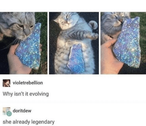 Why, Legendary, and She: violetrebellion  Why isn't it evolving  doritdew  she already legendary