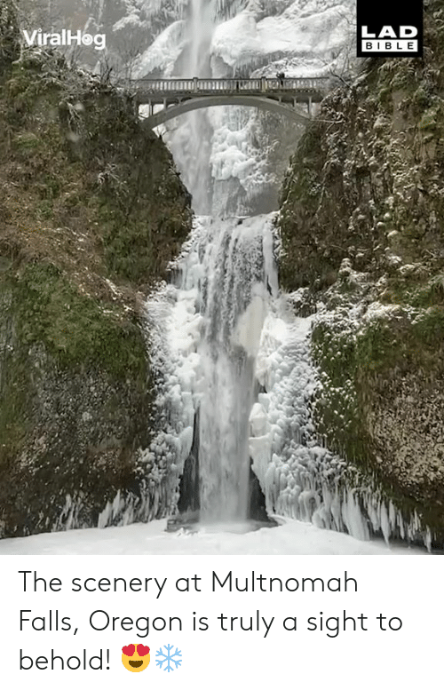 Dank, Bible, and Oregon: ViralHe  LAD  BIBLE The scenery at Multnomah Falls, Oregon is truly a sight to behold! 😍❄️