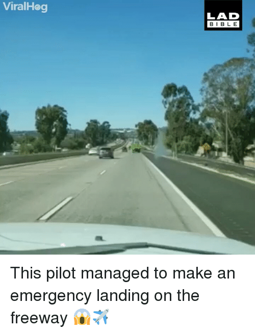 Memes, Bible, and 🤖: ViralHog  LAD  BIBLE This pilot managed to make an emergency landing on the freeway 😱✈️