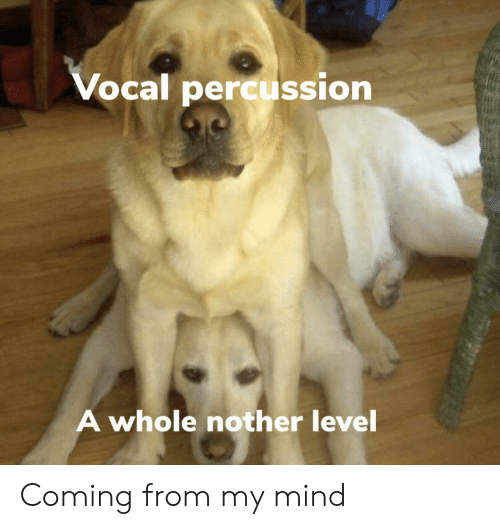 Mind, Level, and Coming: Vocal percussion  A whole nother level Coming from my mind