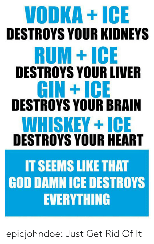 Vodka: VODKA+ICE  DESTROYS YOUR KIDNEYS  RUM+ICE  DESTROYS YOUR LIVER  GIN +ICE  DESTROYS YOUR BRAIN  WHISKEY+ICE  DESTROYS YOUR HEART  IT SEEMS LIKE THAT  GOD DAMN ICE DESTROYS  EVERYTHING epicjohndoe:  Just Get Rid Of It