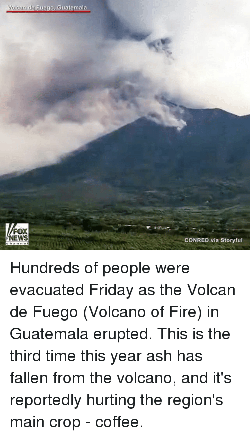 Ash, Fire, and Friday: Volcan de Fuego, Guatemala  FOX  NEWS  CONRED via Storyful Hundreds of people were evacuated Friday as the Volcan de Fuego (Volcano of Fire) in Guatemala erupted. This is the third time this year ash has fallen from the volcano, and it's reportedly hurting the region's main crop - coffee.