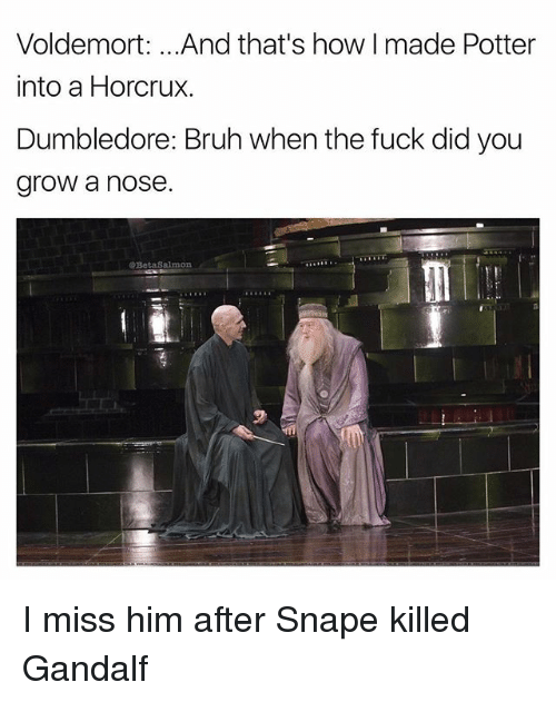 i miss him: Voldemort: .. .And that's how I made Potter  into a Horcrux.  Dumbledore: Bruh when the fuck did you  grow a nose.  @BetaSalmon I miss him after Snape killed Gandalf