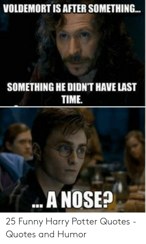 🦅 25+ Best Memes About Funny Harry Potter Quotes | Funny ...