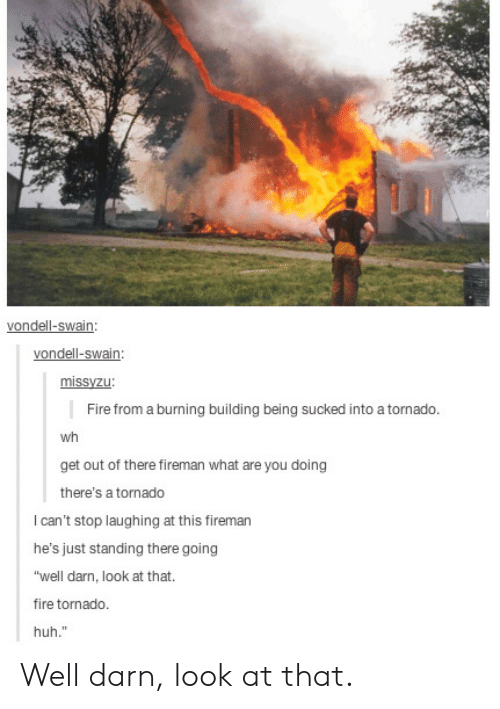 "Out Of There: vondell-swain:  vondell-swain  missyzu  Fire from a burning building being sucked into a tornado  wh  get out of there fireman what are you doing  there's a tornado  I can't stop laughing at this fireman  he's just standing there going  ""well darn, look at that.  fire tornado.  huh."" Well darn, look at that."