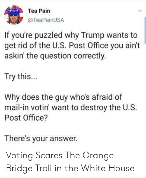 Orange: Voting Scares The Orange Bridge Troll in the White House