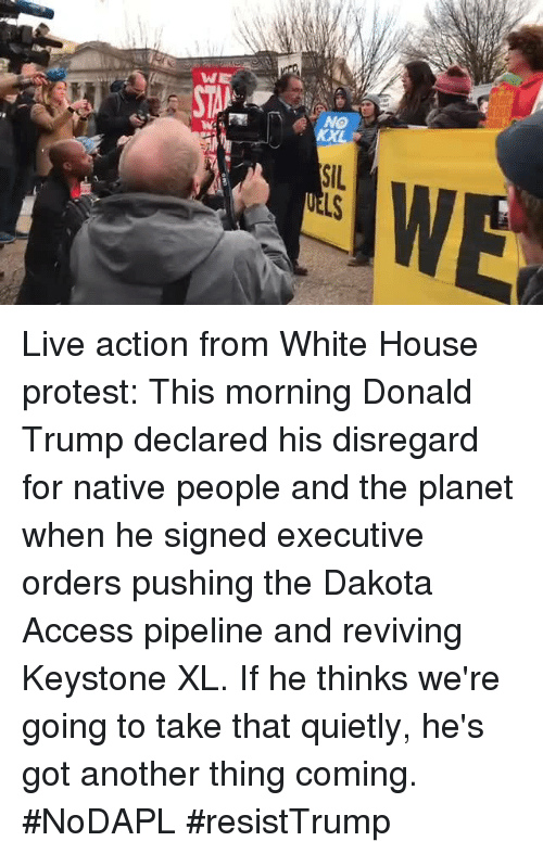 Memes, Access, and 🤖: W  NO  SIL Live action from White House protest: This morning Donald Trump declared his disregard for native people and the planet when he signed executive orders pushing the Dakota Access pipeline and reviving Keystone XL. If he thinks we're going to take that quietly, he's got another thing coming. #NoDAPL #resistTrump