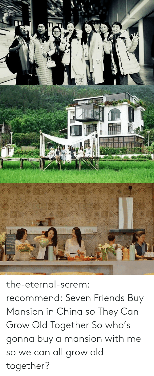 Friends, Target, and Tumblr: W  tni  ast-ds the-eternal-screm:  recommend:    Seven Friends Buy Mansion in China so They Can Grow Old Together  So who's gonna buy a mansion with me so we can all grow old together?