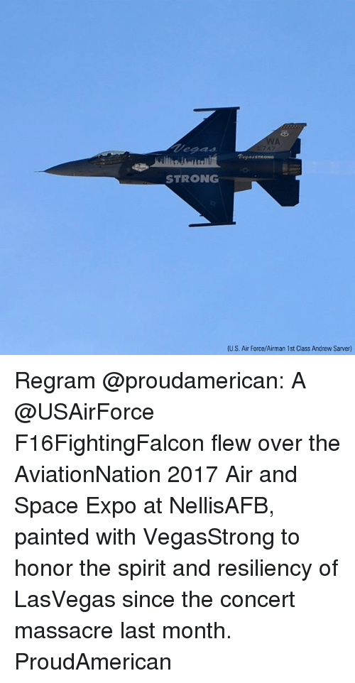 Memes, Air Force, and Space: WA  ea24  Ta944 STRONG  STRONG  (U.S. Air Force/Airman 1st Class Andrew Sarver) Regram @proudamerican: A @USAirForce F16FightingFalcon flew over the AviationNation 2017 Air and Space Expo at NellisAFB, painted with VegasStrong to honor the spirit and resiliency of LasVegas since the concert massacre last month. ProudAmerican