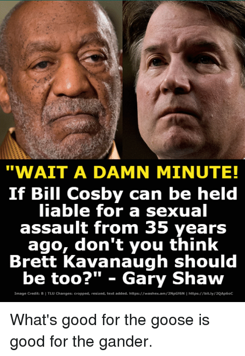 """gander: """"WAIT A DAMN MINUTE!  If Bill Cosby can be held  iable for a sexual  assault from 35 years  ago, don't you think  Brett Kavanaugh should  be too?"""" - Gary Shaw  Image Credita B I TLU Changesi cropped, resized, text added. https://washex.am/2NpGf6N I https:/bit.ly/2QAp6oC What's good for the goose is good for the gander."""