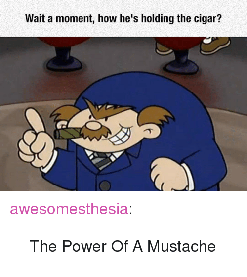 """cigar: Wait a moment, how he's holding the cigar? <p><a href=""""http://awesomesthesia.tumblr.com/post/171162653537/the-power-of-a-mustache"""" class=""""tumblr_blog"""">awesomesthesia</a>:</p>  <blockquote><p>The Power Of A Mustache</p></blockquote>"""