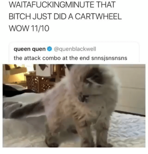 Bitch, Memes, and Wow: WAITAFUCKINGMINUTE THAT  BITCH JUST DID A CARTWHEEL  WOW 11/10  queen quen@quenblackwell  the attack combo at the end snnsjsnsnsns