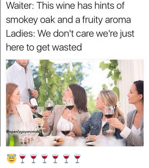 Memes, Wine, and 🤖: Waiter: This wine has hints of  smokey oak and a fruity aroma  Ladies: We don't care we're just  here to get wasted  @openlygayanimal 😇🍷🍷🍷🍷🍷🍷