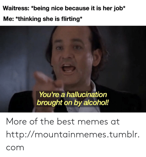 Because It Is: Waitress: *being nice because it is her job*  Me: *thinking she is flirting*  You're a hallucination  brought on by alcohol!  18 More of the best memes at http://mountainmemes.tumblr.com