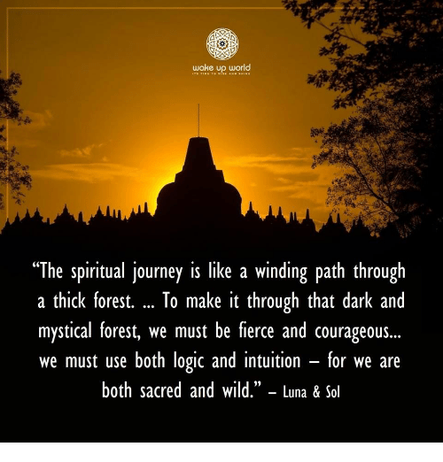 """winding: wake up world  """"The spiritual journey is like a winding path through  a thick forest. To make it through that dark and  mystical forest, we must be fierce and courageous...  we must use both logic and intuition - for we are  both sacred and wild."""" - Luna & Sol  (C"""