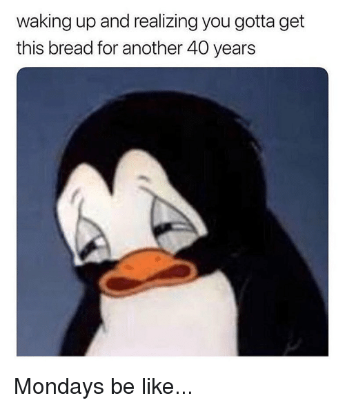 Be Like, Memes, and Mondays: waking up and realizing you gotta get  this bread for another 40 years Mondays be like...