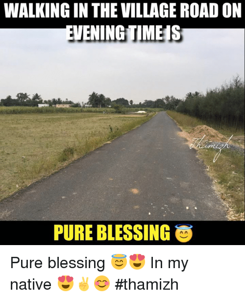 The Villager: WALKINGIN THE VILLAGE ROAD ON  EVENINGTIMEIS  PURE BLESSING O Pure blessing 😇😍 In my native 😍✌️😊 #thamizh