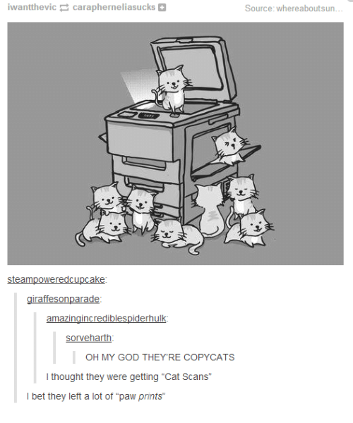 """copycat: want ic carapherneliasucks  steampoweredcu  ake  raffesonparade  amazing incrediblespiderhulk  sorveharth  OH MY GOD THEY'RE COPYCATS  I thought they were getting """"Cat Scans  I bet they left a lot of """"paw prints  Source: whereaboutsun"""