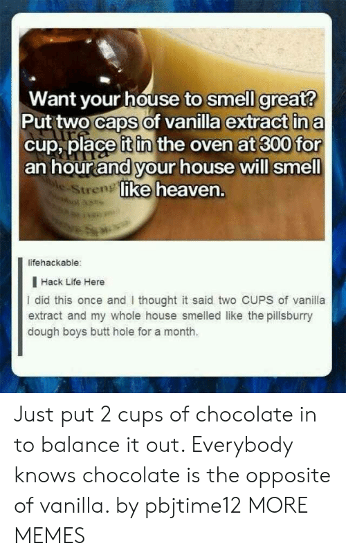 Butt, Dank, and Heaven: Want your house to smell great?  Put two caps of vanilla extract in a  cup, place it in the oven at 300 for  an hour and your house will smell  ke heaven.  e-Stren  lifehackable:  I Hack Life Here  I did this once and thought it said two CUPS of vanila  extract and my whole house smelled like the pillsburry  dough boys butt hole for a month. Just put 2 cups of chocolate in to balance it out. Everybody knows chocolate is the opposite of vanilla. by pbjtime12 MORE MEMES
