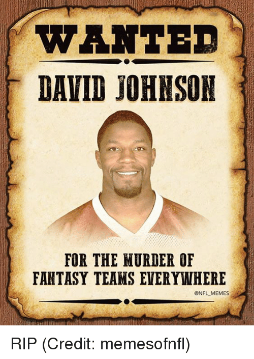Memes, Nfl, and Credited: WANTE  DAVID JOHNSON  FOR THE MURDER OF  FANTASY TEAMS EVERYWHERE  @NFL MEMES RIP (Credit: memesofnfl)