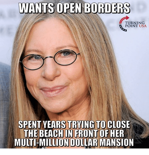 Memes, Beach, and 🤖: WANTS OPEN BORDERS  TURNING  POINT USA  SPENT YEARS TRYING TO CIOSE  THE BEACH IN FRONTOF HER  MULTI-MILLION DOLLAR MANSION