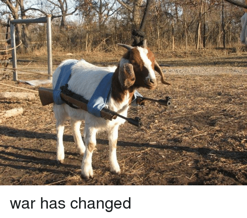 War, War Has Changed, and Has: war has changed