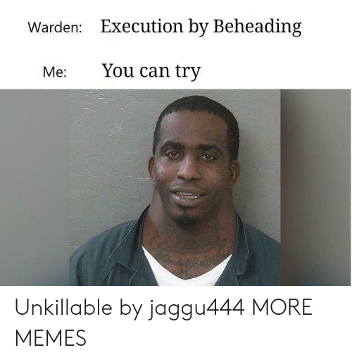 Dank, Memes, and Target: Warden:  Execution by Beheading  Me: You can try Unkillable by jaggu444 MORE MEMES
