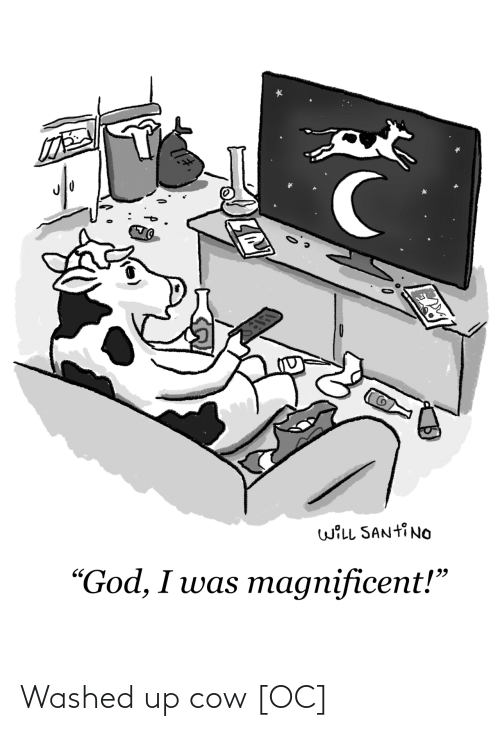 cow: Washed up cow [OC]