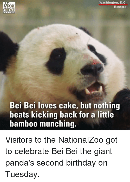 Birthday, Memes, and News: Washington, D.C.  Reuters  NEWS  Bei Bei loves cake, but nothing  beats kicking back for a little  bamb00 munching. Visitors to the NationalZoo got to celebrate Bei Bei the giant panda's second birthday on Tuesday.