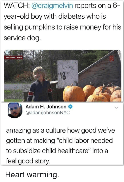 """Money, Diabetes, and Good: WATCH: @craigmelvin reports on a 6-  year-old boy with diabetes who is  selling pumpkins to raise money for his  service dog  NBC AFFIL.KSDK  LARGE  Adam H. Johnson  @adamjohnsonNYC  amazing as a culture how good we've  gotten at making """"child labor needed  to subsidize child healthcare"""" into a  feel good story. Heart warming."""