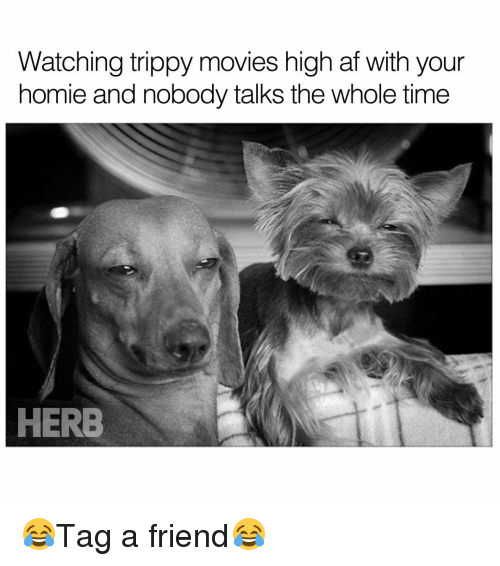 Trippiness: Watching trippy movies high af with your  homie and nobody talks the whole time  HERB 😂Tag a friend😂
