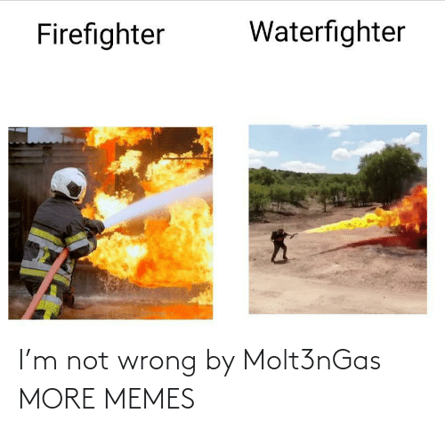 Dank, Memes, and Target: Waterfighter  Firefighter I'm not wrong by Molt3nGas MORE MEMES