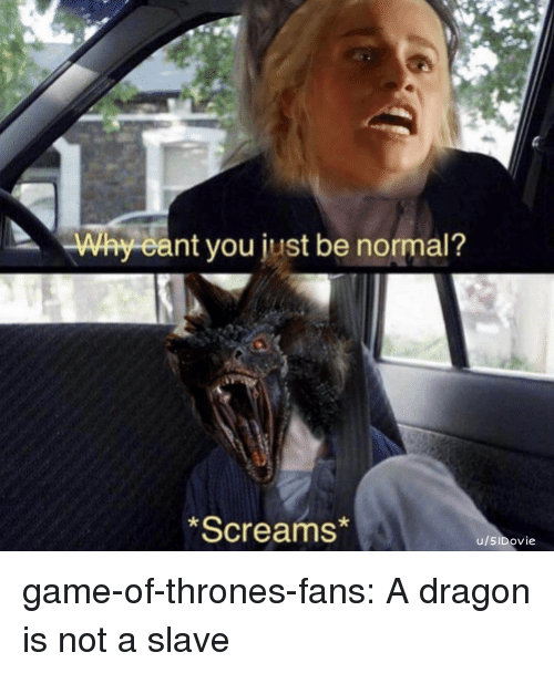 Game of Thrones, Tumblr, and Blog: Way eant you just be normal?  *Screams  u/SIDovie game-of-thrones-fans:  A dragon is not a slave