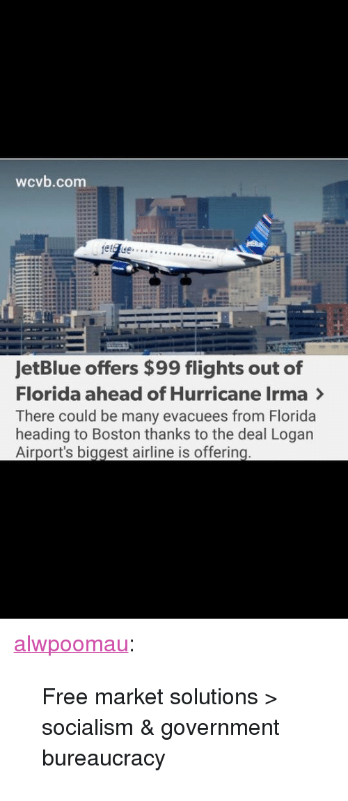 """Tumblr, Blog, and Boston: wcvb.com  JetBlue offers $99 flights out of  Florida ahead of Hurricane Irma >  There could be many evacuees from Florida  heading to Boston thanks to the deal Logan  Airport's biggest airline is offering <p><a href=""""http://alwpoomau.tumblr.com/post/165084351399/free-market-solutions-socialism-government"""" class=""""tumblr_blog"""">alwpoomau</a>:</p>  <blockquote><p>Free market solutions > socialism & government bureaucracy</p></blockquote>"""