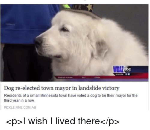 Minnesota, Dog, and Com: WDAZ  Dog re-elected town mayor in landslide victory  Residents of a small Minnesota town have voted a dog to be their mayor for the  third year in a row.  PICKLE.NINE.COM.AU <p>I wish I lived there</p>