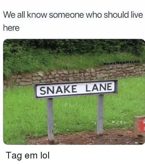 Funny, Lol, and Live: We all know someone who should live  here  MEMEMANMYLES  SNAKE LANE Tag em lol