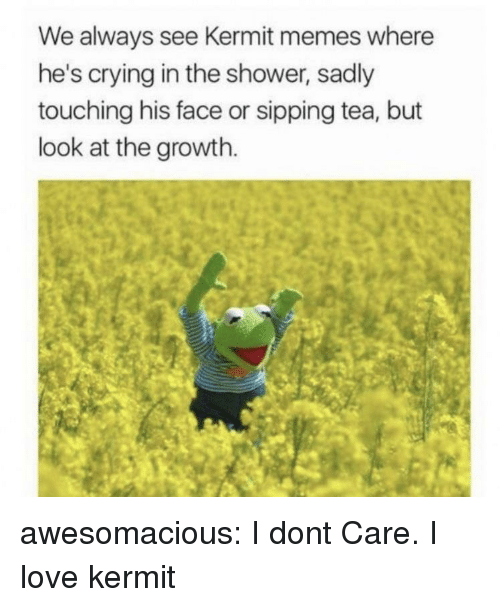Sipping: We always see Kermit memes where  he's crying in the shower, sadly  touching his face or sipping tea, but  look at the growth. awesomacious:  I dont Care. I love kermit