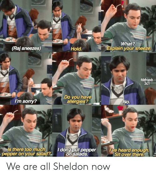 now: We are all Sheldon now