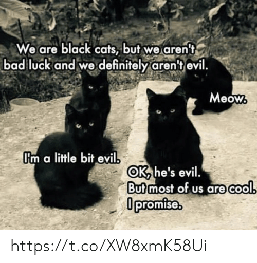 Bad Luck: We are black cats, but we aren't  bad luck and we definitely aren't evil.  Meow  Um a little bit evil  OK he's evil.  Butmost of us are cool  0promise. https://t.co/XW8xmK58Ui