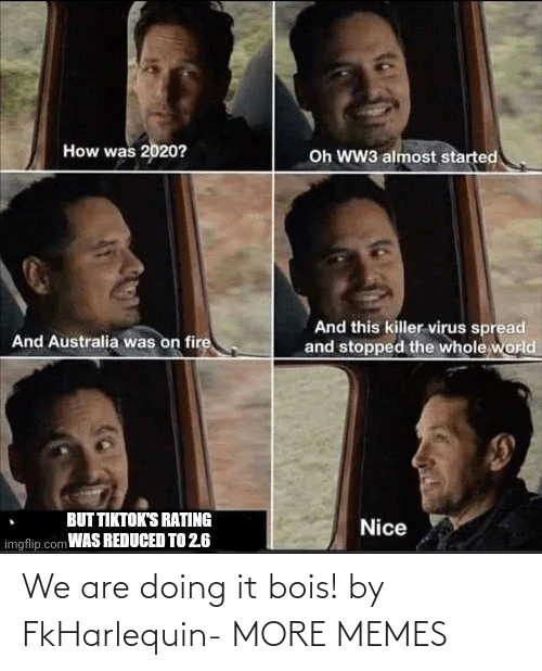 We Are: We are doing it bois! by FkHarlequin- MORE MEMES
