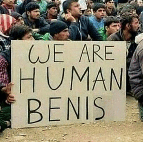 Memes, 🤖, and Benis: WE ARE  HUMANE  BENIS