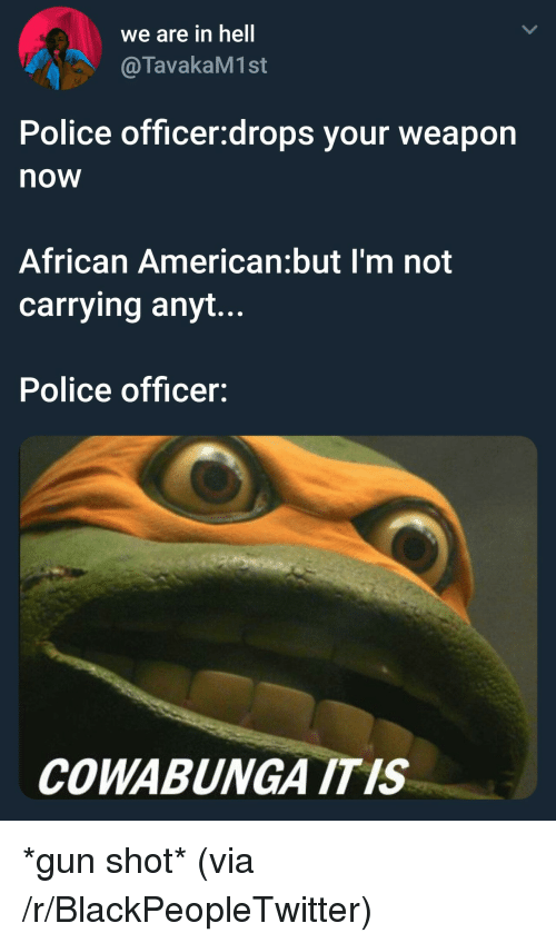 Blackpeopletwitter, Police, and American: we are in hell  @TavakaM1st  Police officer:drops your weapon  now  African American:but I'm not  carrying anyt...  Police officer:  COWABUNGA ITIS *gun shot* (via /r/BlackPeopleTwitter)