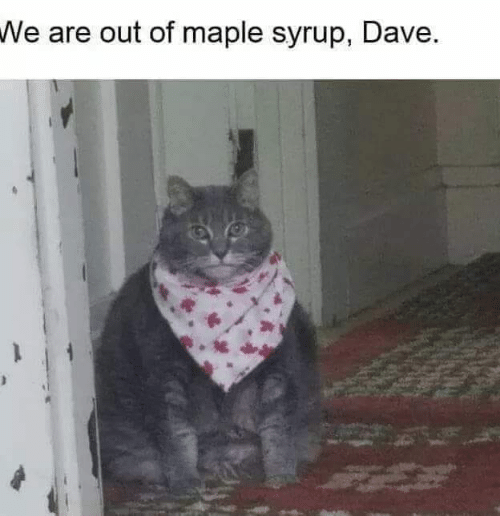 maple: We are out of maple syrup, Dave.
