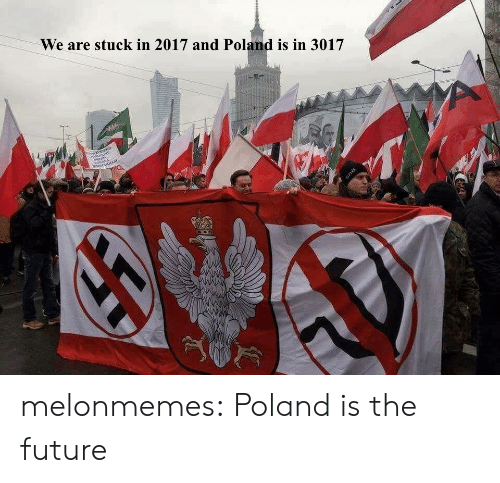 Future, Tumblr, and Blog: We are stuck in 2017 and Poland is in 3017 melonmemes: Poland is the future