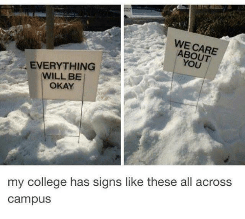 everything will be okay: WE CARE  ABOUT  YOU  EVERYTHING  WILL BE  OKAY  my college has signs like these all across  campus